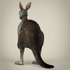 17 38 24 782 low poly realistic kangaroo 04 4