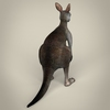 17 38 30 153 low poly realistic kangaroo 05 4