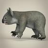 17 38 36 729 low poly realistic koala 03 4