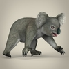 17 38 39 958 low poly realistic koala 06 4