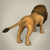 17 38 50 387 low poly realistic lion 05 4