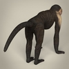 17 38 53 699 low poly realistic capuchin monkey 05 4