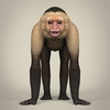 17 38 56 16 low poly realistic capuchin monkey 02 4