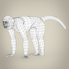 17 38 59 13 low poly realistic capuchin monkey 08 4