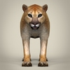 17 39 01 58 low poly realistic mountain lion 02 4