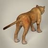 17 39 02 824 low poly realistic mountain lion 05 4
