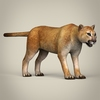 17 39 03 599 low poly realistic mountain lion 06 4