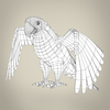 17 55 28 299 low poly realistic parrot 08 4