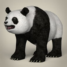 Low Poly Realistic Giant Panda 3D Model