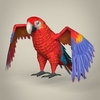 17 55 46 472 low poly realistic parrot 01 4