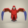 17 55 47 245 low poly realistic parrot 02 4