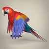 17 55 48 938 low poly realistic parrot 03 4