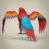 17 55 49 724 low poly realistic parrot 04 4