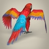17 55 51 243 low poly realistic parrot 05 4