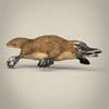 17 56 02 90 low poly realistic platypus 06 4
