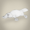 17 56 07 611 low poly realistic platypus 08 4