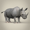 17 56 10 757 low poly realistic rhinoceros 06 4