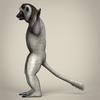 17 56 14 488 low poly realistic sifaka lemur 03 4
