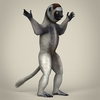 17 56 17 30 low poly realistic sifaka lemur 06 4