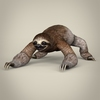17 56 21 680 low poly realistic sloth 01 4