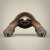 17 56 22 411 low poly realistic sloth 02 4