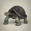 17 56 31 197 low poly realistic tortoise 01 4
