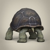 17 56 34 228 low poly realistic tortoise 04 4