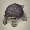 17 56 35 12 low poly realistic tortoise 05 4