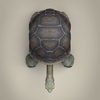 17 56 36 387 low poly realistic tortoise 07 4