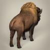 17 56 55 606 low poly realistic montana buffalo 05 4