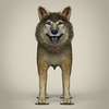 17 57 09 143 low poly realistic wolf 02 4
