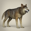 17 57 12 115 low poly realistic wolf 06 4