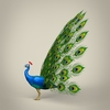 17 59 53 897 low poly realistic peocock 03 4