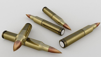Brass Bullets 3D Model