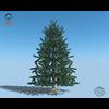 18 04 32 472 christmas tree 01 4