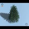 18 04 33 198 christmas tree 02 4