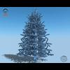 18 04 38 288 christmas tree 06 4