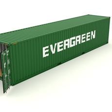 Shipping Container Evergreen 3D Model