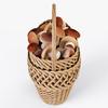 19 16 47 485 004 wicker basket 01 mushrooms  4