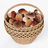 19 16 50 29 005 wicker basket 01 mushrooms  4
