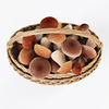 19 16 50 974 006 wicker basket 01 mushrooms  4