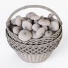 19 16 57 269 014 wicker basket 01 mushrooms  4