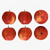 19 17 22 89 014 nipprig apples  4