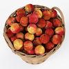 19 18 01 843 005 nipprig apples  4