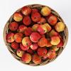 19 18 02 744 006 nipprig apples  4