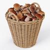 19 21 05 839 002 nipprig mushrooms  4