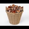 19 21 23 494 001 nipprig mushrooms  4