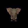 20 28 12 559 elephantblackpic2 4