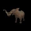 20 28 21 92 elephantblackpic3 4
