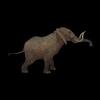 20 28 28 400 elephantblackpic5 4